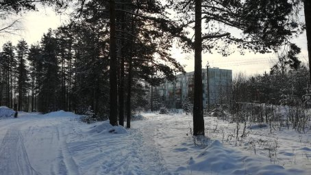 Ненимяки зимой - дом 113