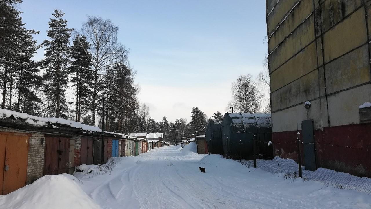 Гаражи в деревне Ненимяки и одинокий кот у кочегарки